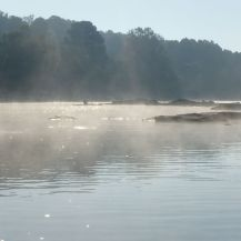 Morning fog as we start to fish