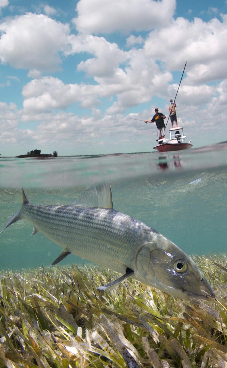 Monthly speaker april 25 2017 jason edgecombe bonefish for Fly fishing houston