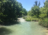 Fast run in the river